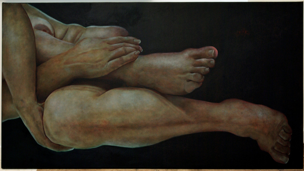 Deborah Trusson 2010, Superfluous Meaning Oil on canvas 97.5 x 177 cm